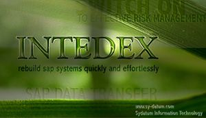 Intedex Window