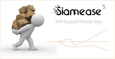 Siamease5_01