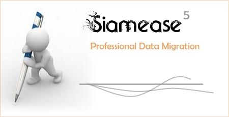 Siamease5_02