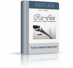 REFLEX – Rebuild Flex-GL with Document Splitting